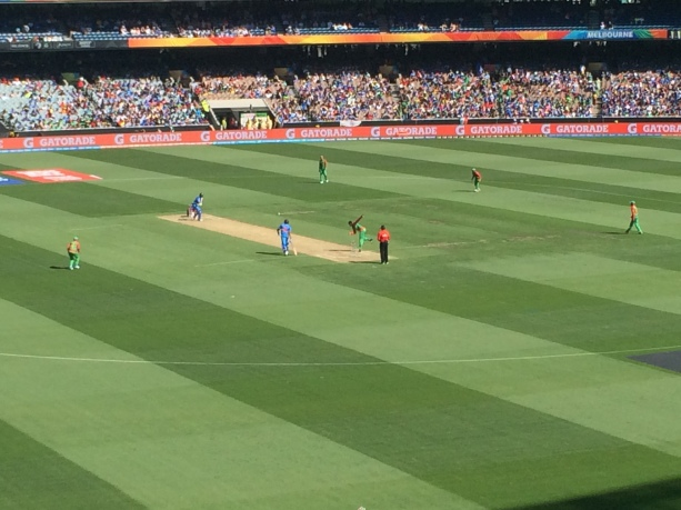 SAP Cricket World Cup (2)